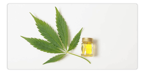 Oral CBD – How Does it Work?