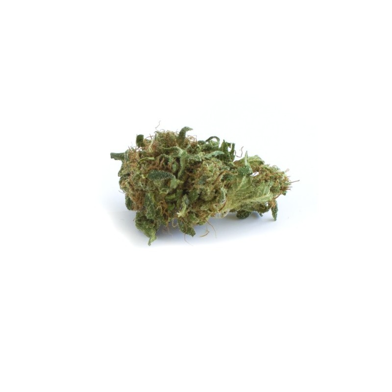 Sour Widow | PlantandHemp