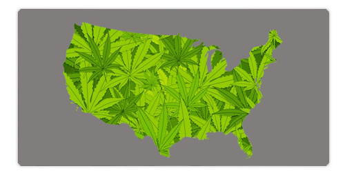 States Where CBD is Legal