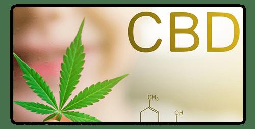 CBD Can it make you high? like THC? cannabis Plantandhemp
