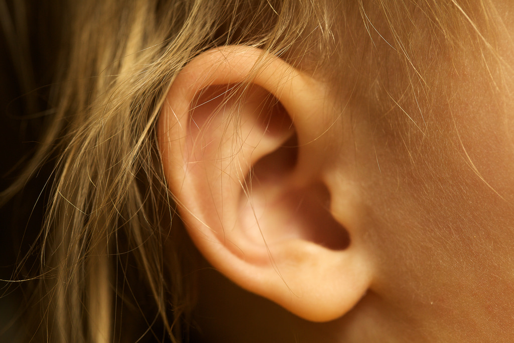 Can Cbd Oil Be Put In The Ear Plant Hemp The Cbd Experts