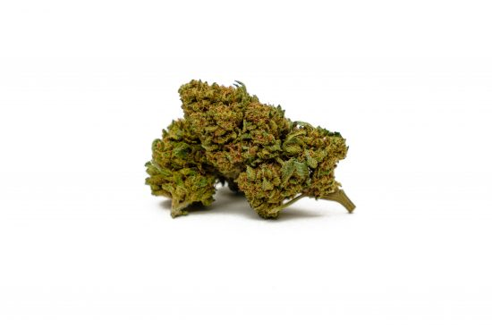 "Amnesia | Greenhouse Grow <span style=""color: #ff0000;""><strong>SOLD OUT</strong></span>"