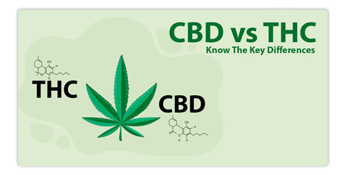 CBD Vs THC?