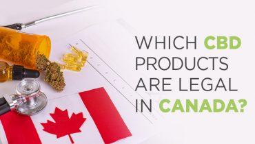 Is CBD Legal in Canada?