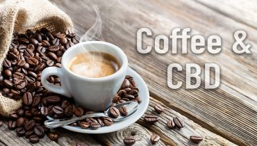 CBD y café