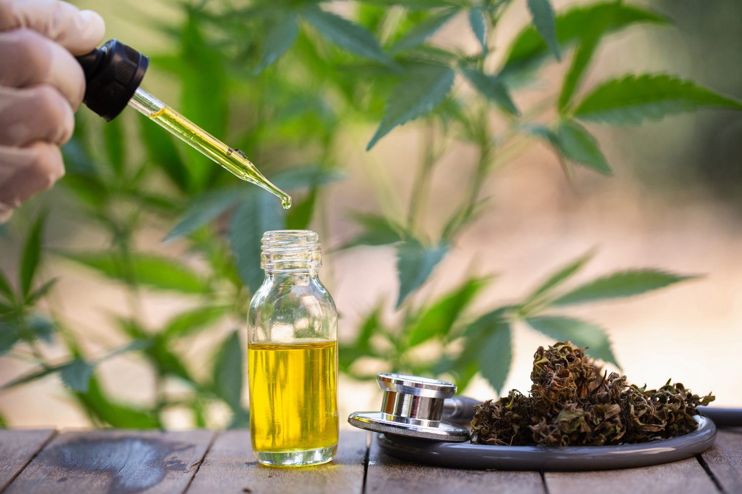 Who is CBD Safe For?