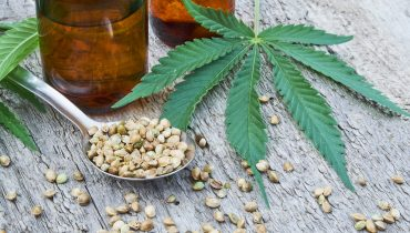Where Does CBD Oil Come From?