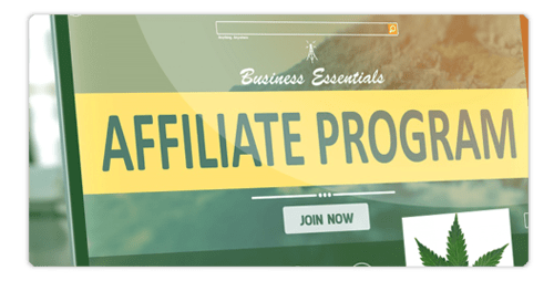 Can Affiliate Marketing be a career?