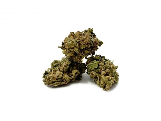 """Lemon Haze   Outdoor Grow   VAT in <span style=""""color: #ff0000;""""><strong>SOLD OUT</strong></span>"""