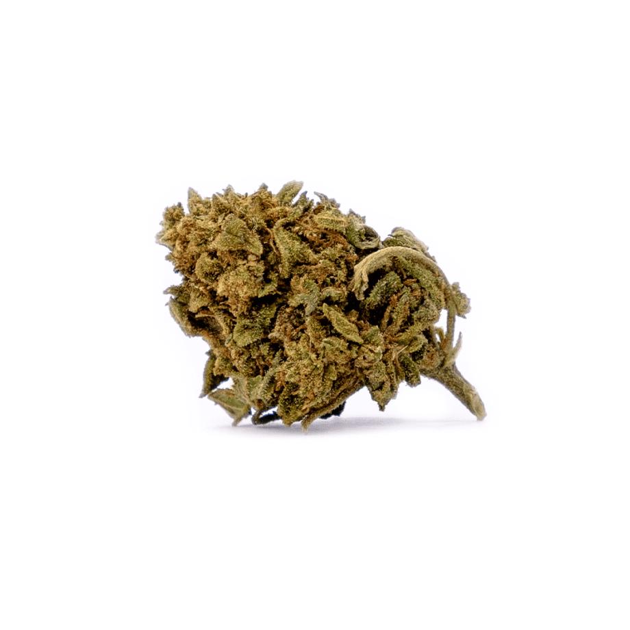 Mandarina 2_021020