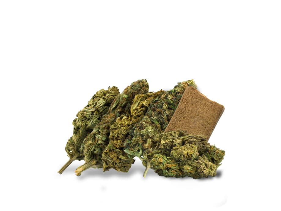 Discovery Pack CBD Flowers